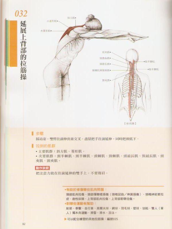 延伸上背部的拉筋操