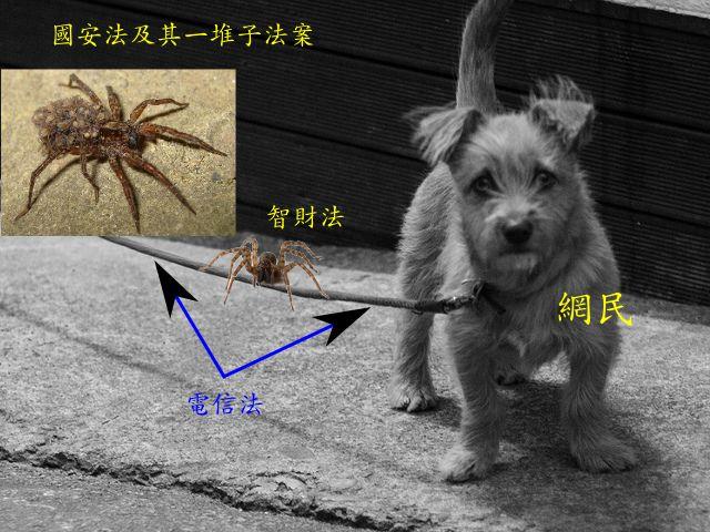 一隻背著許多小蜘蛛的大蜘蛛、 另一隻大蜘蛛、 跟一條繫著小狗狗的繩子