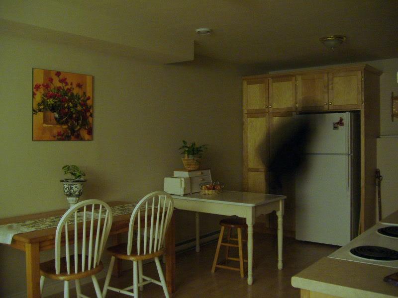 家裡的鬼影森森