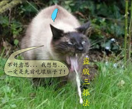 貓咪吐出盜版三振垃圾法案