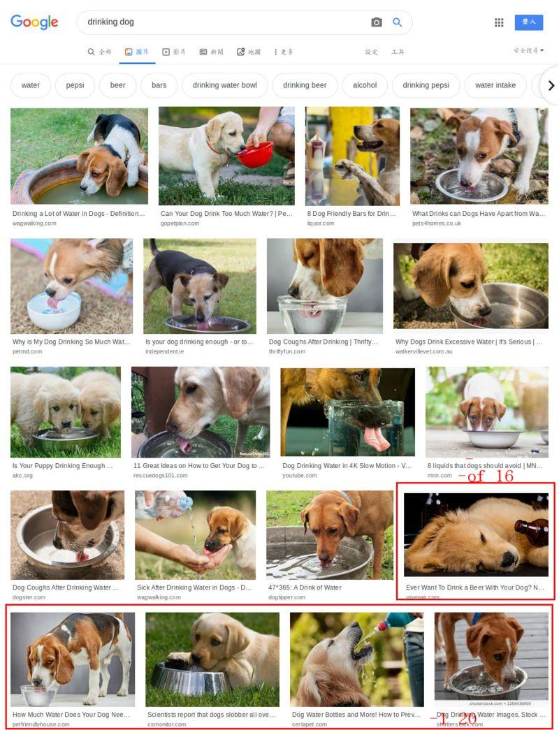 google 圖片搜尋 「dog drinking」